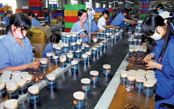 雖面臨甚多困難,但越南不少企業仍良好履行對社會的責任。