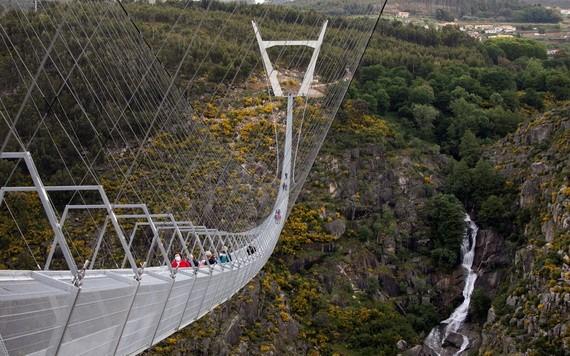 葡萄牙阿羅卡516吊橋全長516公尺、高176公尺,位在阿羅卡地質公園內,可以俯瞰整個山谷景色。(圖源:路透社)