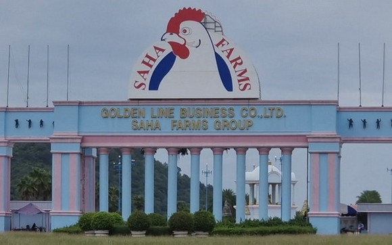 泰國北部碧差汶府一家雞肉加工廠超過3000名工人的新冠病毒檢測呈陽性。(圖源:互聯網)