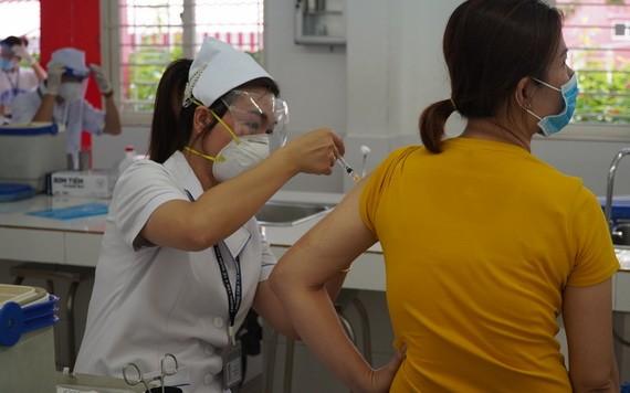 本市近 530 萬民眾接種新冠疫苗。(圖源:HCDC)