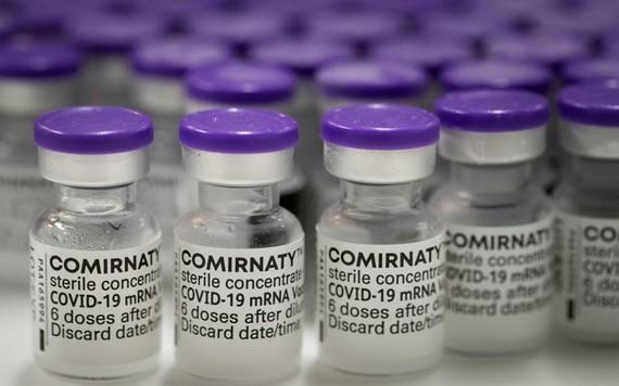 政府副總理黎明概日前代表政府總理簽署了有關增購1999萬8810劑輝瑞新冠疫苗經費的第1547號《決定》。(示意圖源:互聯網)