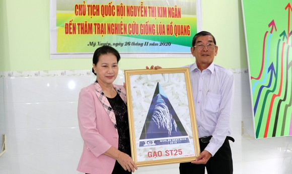 Chủ tịch Quốc hội Nguyễn Thị Kim Ngân thăm cơ sở sản xuất giống lúa ST25 ảnh 3