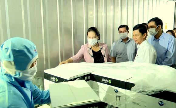 Chủ tịch Quốc hội Nguyễn Thị Kim Ngân thăm cơ sở sản xuất giống lúa ST25 ảnh 5