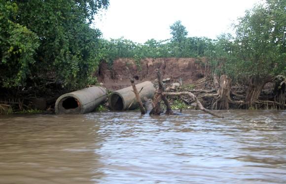 Sóc Trăng công bố tình huống khẩn cấp sạt lở các cồn trên Sông Hậu ảnh 1