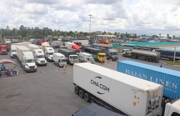 Cần Thơ: Ùn ứ phương tiện vận tải hàng hoá tại bãi tập kết ảnh 2