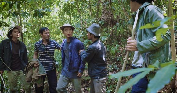 """Vụ án """"ăn chặn kỳ nam"""" tại Khánh Hòa và nạn phá rừng lên phim ảnh 1"""