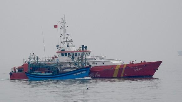 Tàu SAR 411 cứu 7 ngư dân cùng tàu cá Bình Định gặp nạn trên biển  ảnh 1