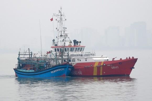 Tàu SAR 411 đưa tàu cá BĐ 96691 TS về đến đất liền Đà Nẵng an toàn