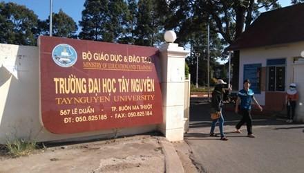 Đắk Lắk: 12 thí sinh trúng tuyển đại học, không được nhập học  ảnh 1