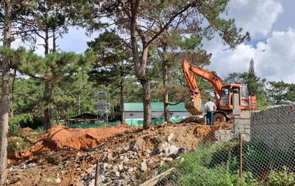Giải toả nhiều công trình trái phép dưới tán rừng thông ở Đà Lạt ảnh 1