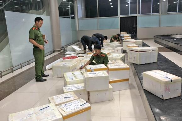 Bắt giữ hơn 600 thùng dâu tây nghi của Trung Quốc nhập lậu vào Đà Lạt qua đường hàng không ảnh 1