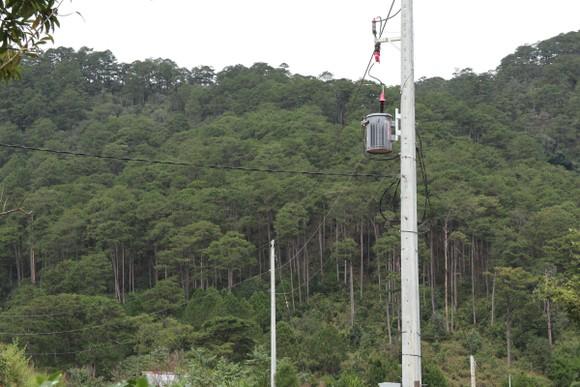 Hàng chục căn nhà xây dựng trái phép giữa đất rừng ở Lâm Đồng ảnh 8