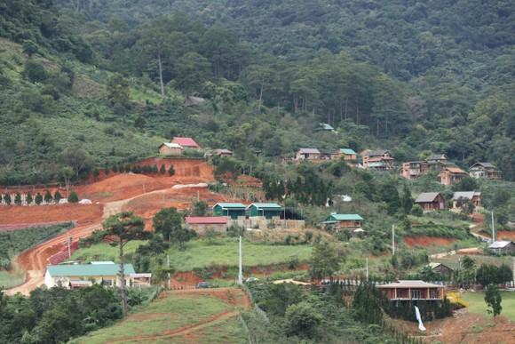 Hàng chục căn nhà xây dựng trái phép giữa đất rừng ở Lâm Đồng ảnh 9