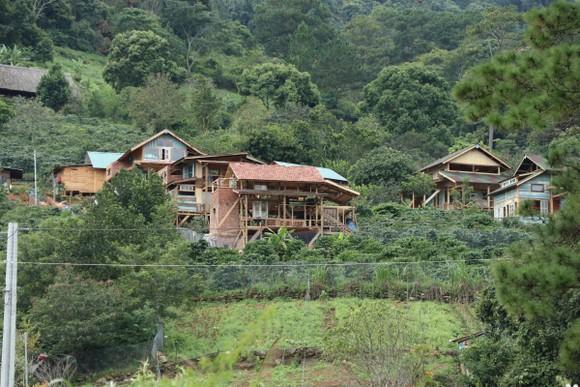 Lâm Đồng chỉ đạo xử lý nghiêm vụ hàng chục căn nhà xây trái phép giữa đất rừng ảnh 1