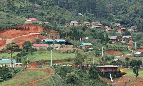 Giải toả nhà trái phép giữa đất rừng gần khu du lịch hồ Tuyền Lâm ảnh 4