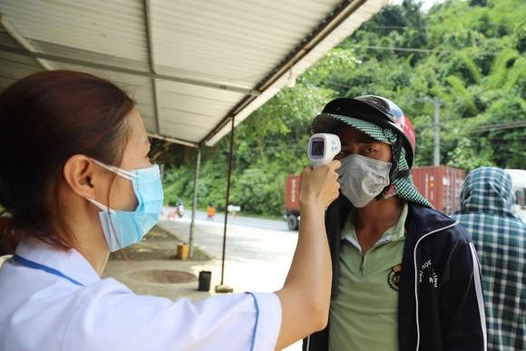 Dừng xe hợp đồng, taxi chở khách từ vùng dịch về Đà Lạt – Lâm Đồng ảnh 1
