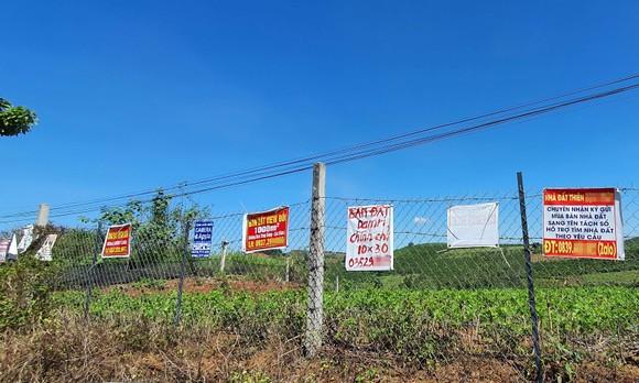 Lâm Đồng xử lý nhiều cán bộ liên quan tách thửa, quản lý đất đai ảnh 4