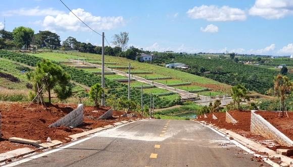 Đình chỉ công tác thêm một cán bộ liên quan tách thửa, quản lý đất đai tại TP Bảo Lộc ảnh 1