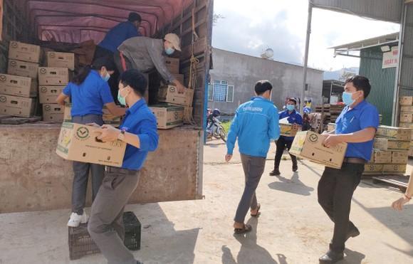 Lâm Đồng tiếp tục gửi nhiều 'chuyến xe yêu thương' tiếp sức TPHCM phòng chống dịch Covid-19 ảnh 5