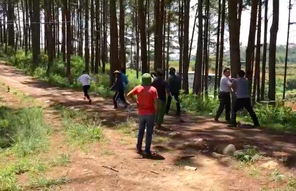 Đi xử lý san gạt, lấn chiếm đất rừng, nhóm cán bộ phường bị đuổi đánh ảnh 1