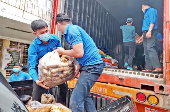 Thêm nhiều xe rau, củ từ Lâm Đồng hỗ trợ vùng dịch ở TPHCM và Phú Yên ảnh 9