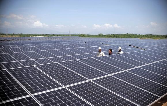 Ninh Thuận cần cơ chế để trở thành Trung tâm năng lượng tái tạo cả nước ảnh 2