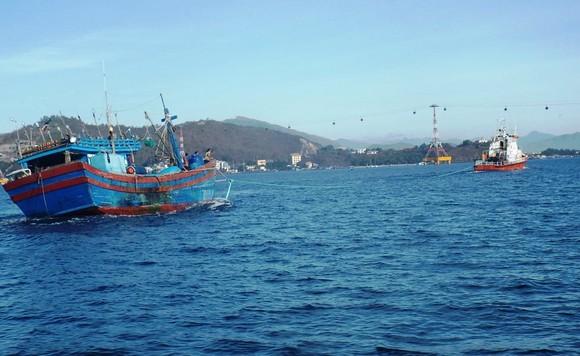 Vụ 26 ngư dân Bình Định mất tích trên biển: Đã tìm thấy vị trí nơi chìm tàu  ảnh 1