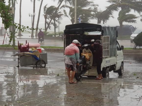 Những thiệt hại ban đầu của cơn bão số 12 ảnh 28