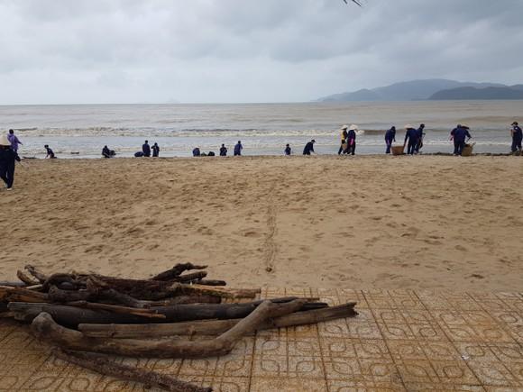 """Biển Nha Trang """"ngập"""" rác sau mưa lũ ảnh 6"""