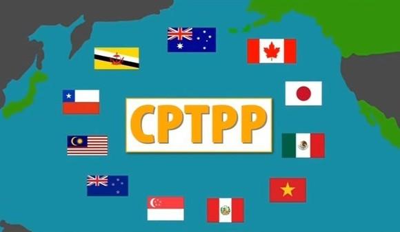 Việt Nam chính thức tham gia CPTPP từ hôm nay 12-11