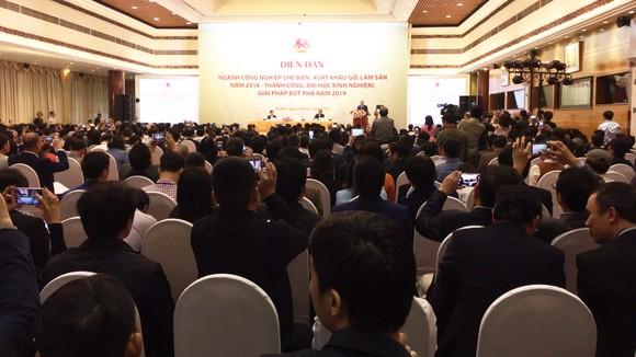 Hỗ trợ người trồng rừng, để Việt Nam xây dựng vùng nguyên liệu gỗ xuất khẩu bền vững ảnh 1