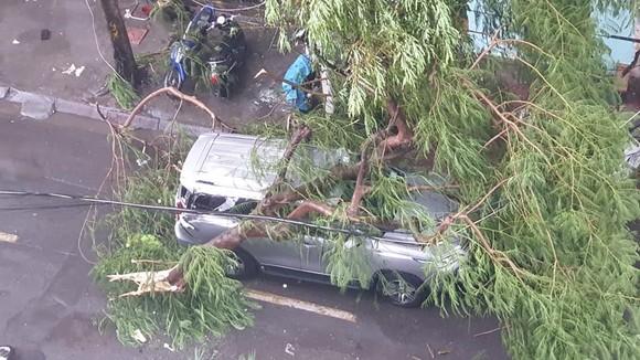 Tâm bão số 4 đã đổ bộ vào Quảng Bình - Quảng Trị? ảnh 6