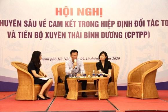 Chia sẻ kinh nghiệm cho các doanh nghiệp xuất hàng hóa vào CPTPP ảnh 2