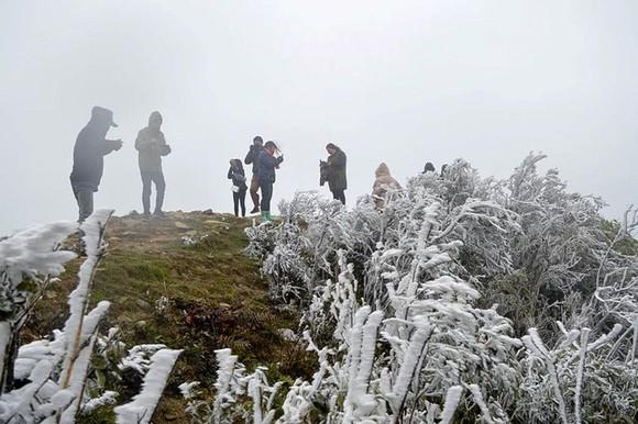 Dự báo, băng giá có thể xuất hiện sau vài ngày nữa ở miền Bắc. Ảnh minh họa: Internet