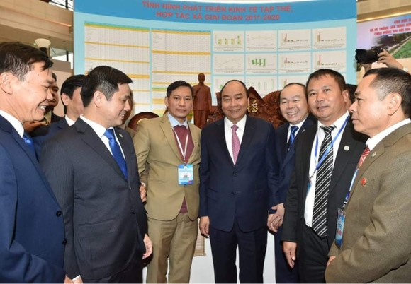 Ông Nguyễn Ngọc Bảo tái nhiệm Chủ tịch Liên minh Hợp tác xã Việt Nam  ảnh 1