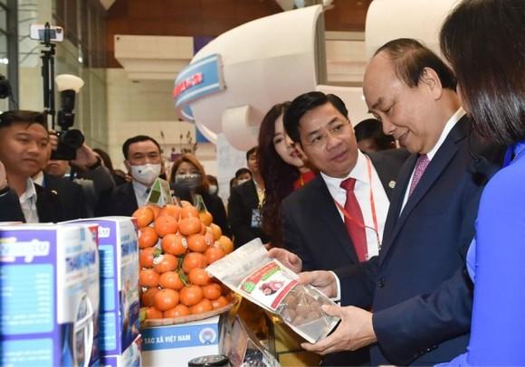 Ông Nguyễn Ngọc Bảo tái nhiệm Chủ tịch Liên minh Hợp tác xã Việt Nam  ảnh 3