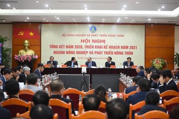 Bất chấp dịch Covid-19, nông nghiệp Việt Nam vẫn 'làm nên kỷ lục' ảnh 1