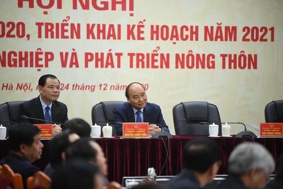 Bất chấp dịch Covid-19, nông nghiệp Việt Nam vẫn 'làm nên kỷ lục' ảnh 2