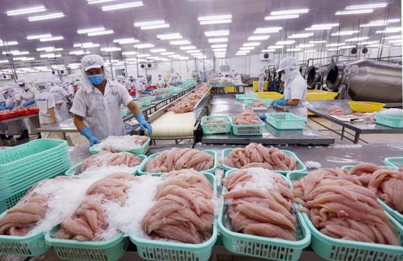 Để vực dậy thị trường tiêu thụ nông sản của Việt Nam và Nga ảnh 2