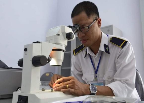 Vải thiều Việt Nam gây được tiếng vang sau 1 năm xâm nhập thị trường Nhật Bản ảnh 2