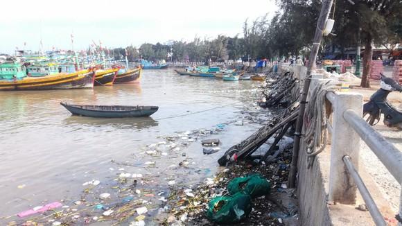 Sông Cà Ty chảy qua thành phố biển thơ mộng bị ô nhiễm nghiêm trọng ảnh 2