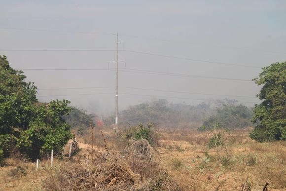 Cháy lớn đe dọa hàng loạt dự án điện gió, Chủ tịch huyện trực tiếp chỉ đạo dập lửa ảnh 3