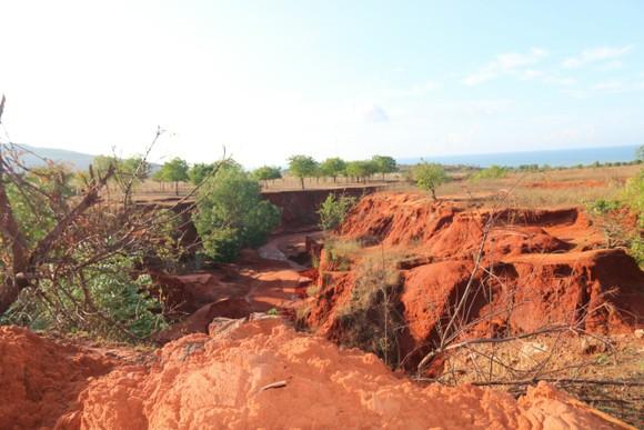Lại xảy ra nhiều điểm sạt lở, lũ cát trên các tuyến đường ven biển Bình Thuận ảnh 1