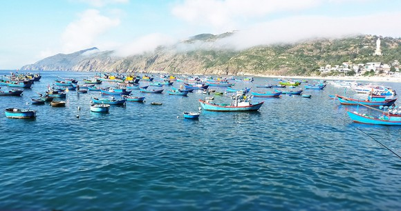 Boats are always ready to sail as soon as there is news of large schools of fish off the coast.