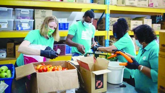 Tình nguyện viên Lost Food Project phân loại thực phẩm  tươi sống trước khi gửi các đối tác từ thiện