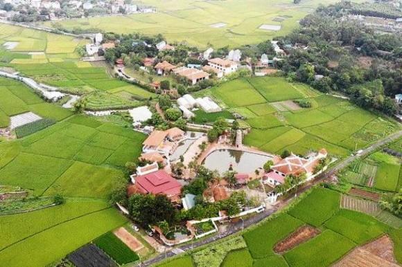 Thu hồi toàn bộ đất mua bán vi phạm của sư Thích Thanh Toàn quanh chùa Nga Hoàng  ảnh 1