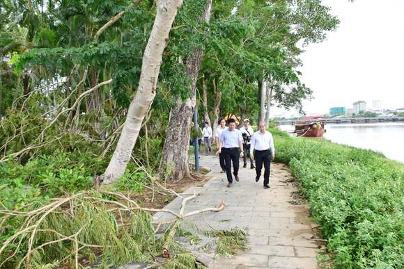 Thừa Thiên – Huế ra quân dọn dẹp cây xanh ngã đổ sau bão số 5 ảnh 2