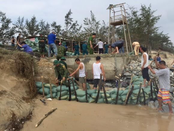Khẩn cấp gia cố bờ biển bị xâm thực 40m ảnh 3