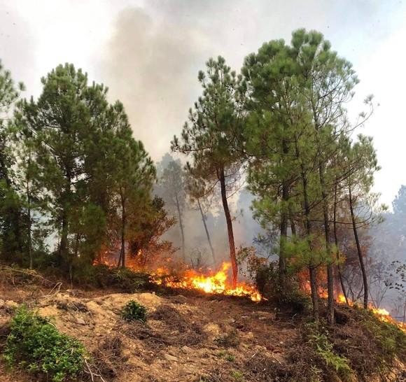 Cháy lớn xuyên đêm trên đỉnh núi Phú Sơn  ảnh 2
