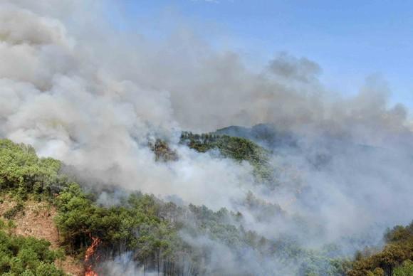Huy động gần 1.000 người dập lửa rừng thông cháy gần kho K890 Cục Quân Khí ảnh 1